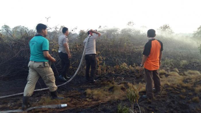 Api Lalap 7 Hektar Lahan Belukar di Tanjung Medang Meranti